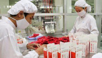 Quy định về điều kiện chế biến, sản xuất dược liệu